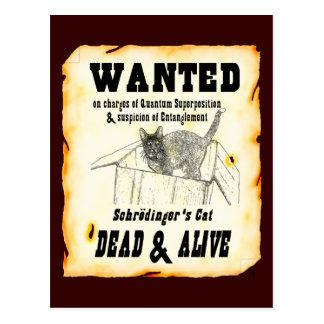 VOULU : Carte postale du chat de Schrodinger