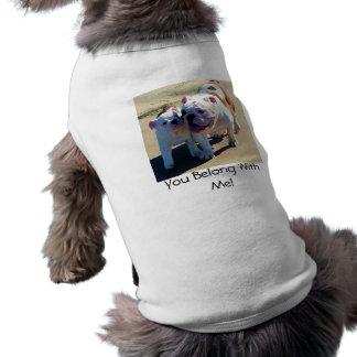 Vous appartenez avec moi ! t-shirt pour chien