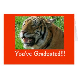 Vous avez reçu un diplôme ! ! ! cartes