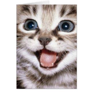 Vous êtes le Meow de chats ! Carte drôle de chat
