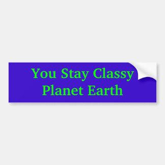 Vous restez la terre chique de planète autocollant de voiture