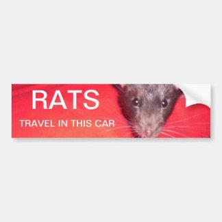voyage de rats autocollant de voiture