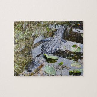 Vrai puzzle d'alligator pour l'ensemble plus jeune