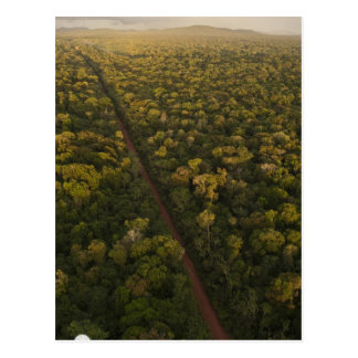 Vue aérienne de forêt tropicale. Réservation Carte Postale