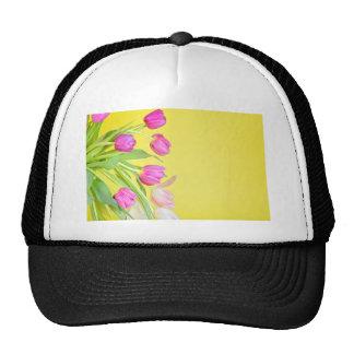 Vue aux tulipes multicolores au-dessus du papier casquette
