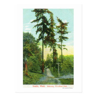 Vue d'allée au parc de région boisée cartes postales