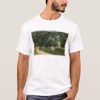 Vue de champ de bataille, maintenant vert de t-shirt