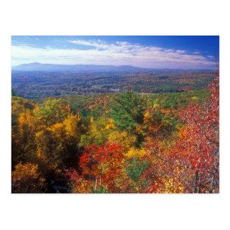 Vue de feuillage de montagne de monument carte postale