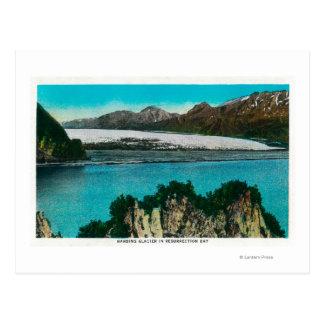 Vue de glacier de Harding dans la baie de Carte Postale