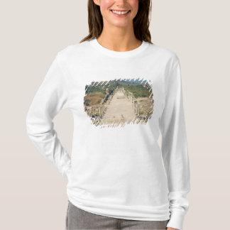 Vue de la manière arcadienne t-shirt