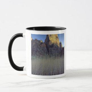 Vue de plaine inondable de rivière de Vierge, Mugs