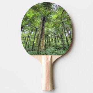 Vue de végétation dans les jardins botaniques de raquette tennis de table