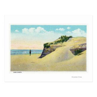 Vue des dunes de sable typiques de la Nouvelle Cartes Postales