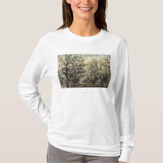 Vue d'un verger de pruneau de 300.000 arbres t-shirt
