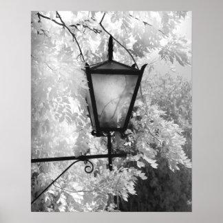 Vue noire et blanche d'appareil d'éclairage affiche