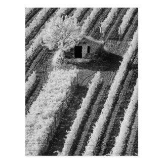 Vue noire et blanche de petite grange en pierre carte postale