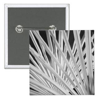 Vue noire et blanche des frondes de palmier badges