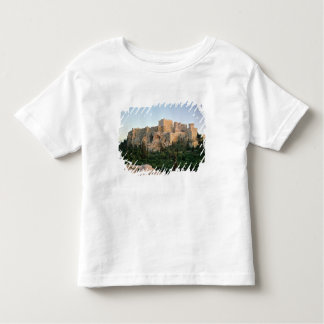 Vue panoramique de l'Acropole T-shirt Pour Les Tous Petits