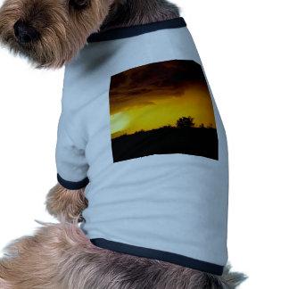 Vue perturbée par ciel vêtements pour chien