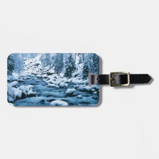 WA, réserve forestière de Wenatchee, cascade Étiquettes Bagages