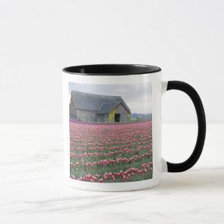 WA, vallée de Skagit, champ de tulipe et grange Mug