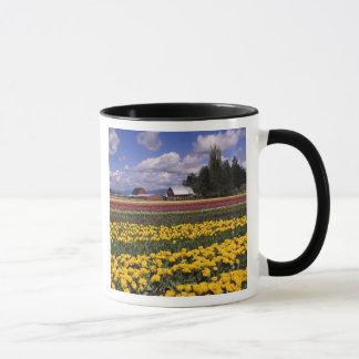 WA, vallée de Skagit, tulipe de vallée de Skagit Mug