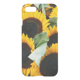 Washington, Seattle, tournesol à vendre le brochet Coque iPhone 8/7