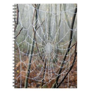 Web de carnet européen de photo d'araignée de