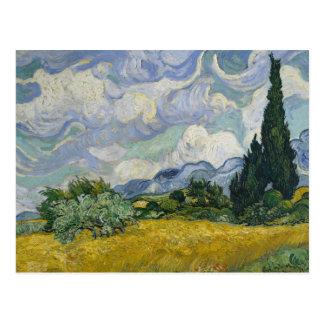 Wheatfield avec des cyprès carte postale
