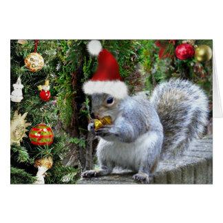 Whiskas la carte de Noël d'écureuil