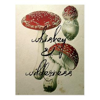 Whiskey et champignon de région sauvage carte postale