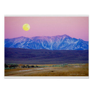 White Mountains, Californie, Etats-Unis Posters