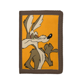 Wile E Coyote Looking fier
