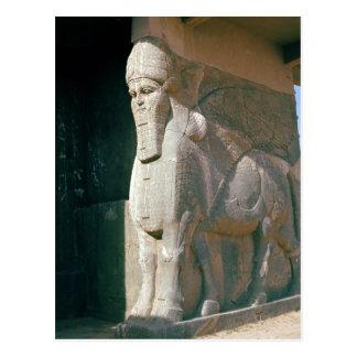 Winged humain-a dirigé le taureau, période carte postale