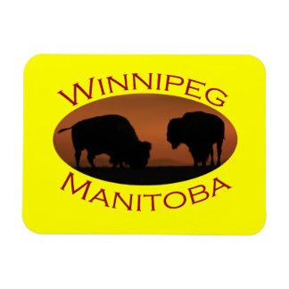 Winnipeg Magnets Rectangulaire
