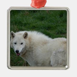 Wolf sage ornement carré argenté