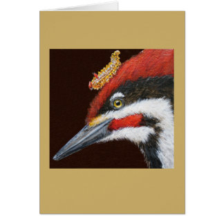 Woodrow la carte pileated de pivert