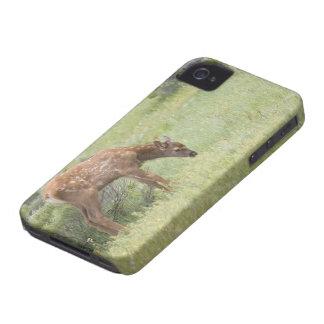 WY, parc national de Yellowstone, veau d'élans Coque Case-Mate iPhone 4