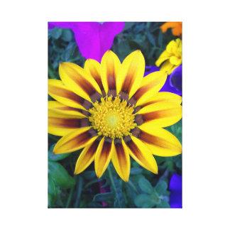 X12 jaune de la toile 12 de fleur de plaisir de