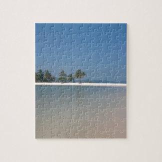 Yao Yai Puzzle