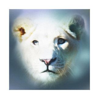 Yeux bleus blancs de lion de l'Afrique Toile