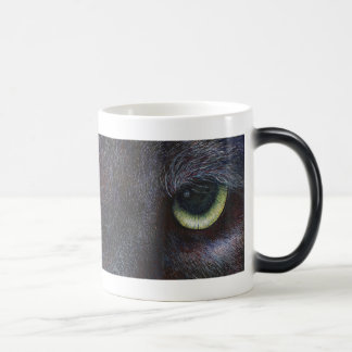 Yeux de Hyptnotist Tasses À Café