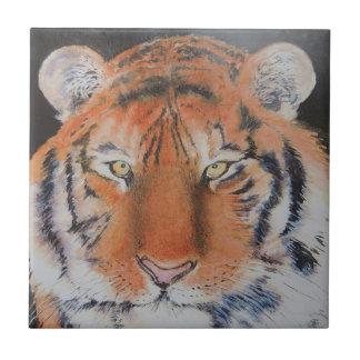 Yeux de tigre petit carreau carré