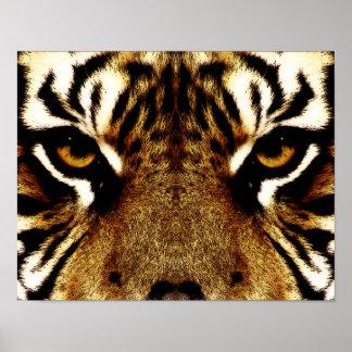 Yeux d'un tigre poster