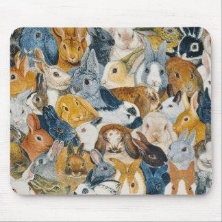 Yeux lumineux tapis de souris