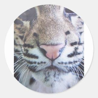 Yeux mignons de tigre autocollant rond