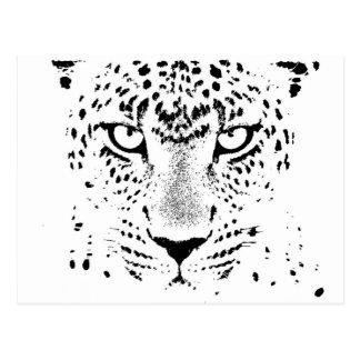 Yeux noirs et blancs de léopard cartes postales