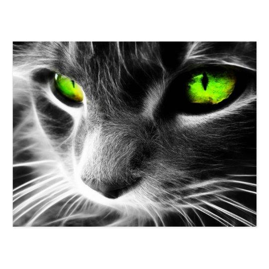 yeux verts de chat gris carte postale zazzle. Black Bedroom Furniture Sets. Home Design Ideas