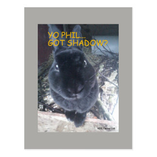 Yo Phil, obtenu l'ombre - carte postale