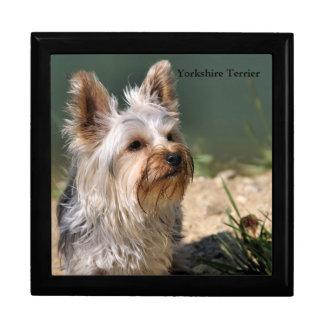 Yorkshire Terrier Grande Boîte À Bijoux Carrée